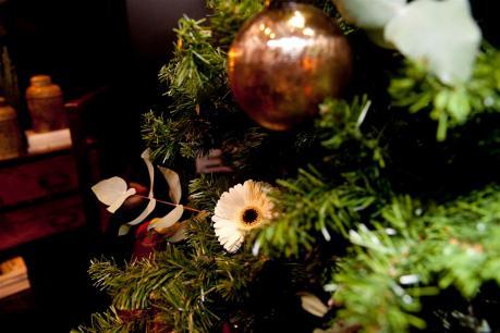 Interflora Navidad (33)