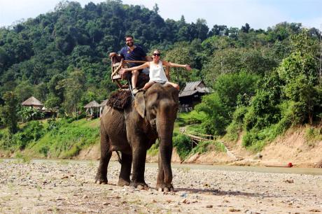 el sofa amarillo bañar elefantes en laos (1)