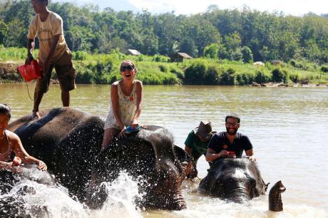 el sofa amarillo bañar elefantes en laos (2)
