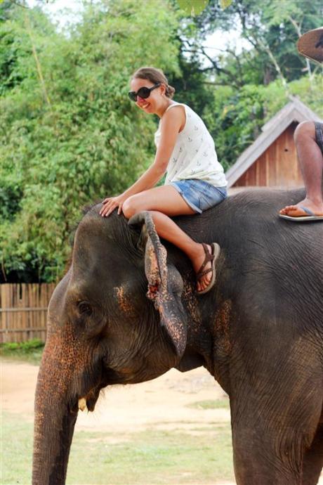 el sofa amarillo montar en elefante en laos (11)