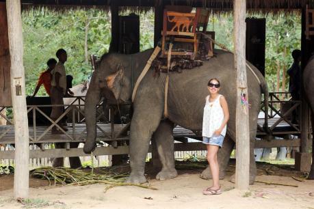 el sofa amarillo montar en elefante en laos (3)