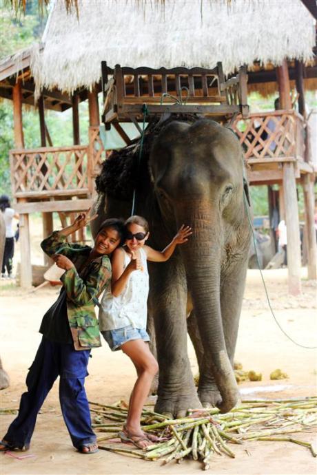 el sofa amarillo montar en elefante en laos (7)