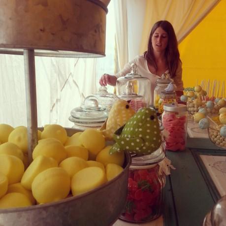 el sofa amarillo boda rustica burgos (11)